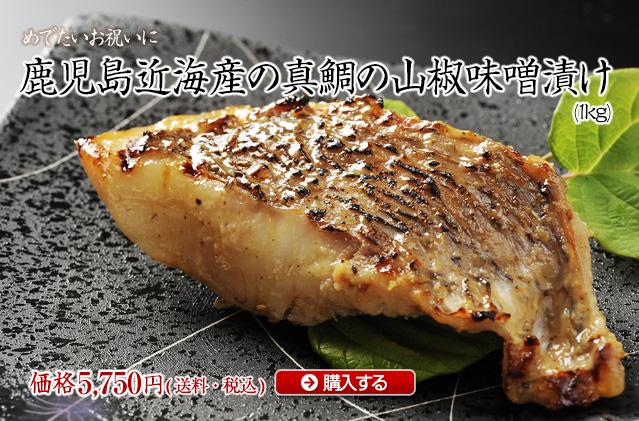錦江湾の真鯛の山椒味噌漬け